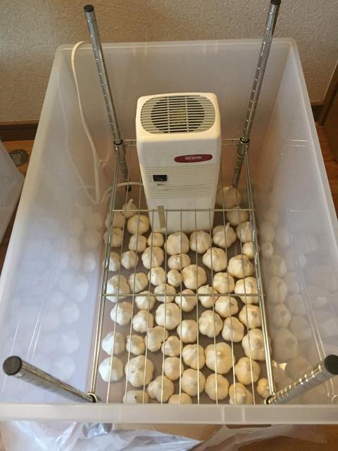 除湿機でニンニク乾燥機を自作-3