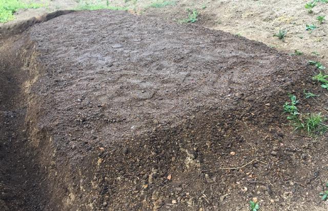 緑肥の種まき