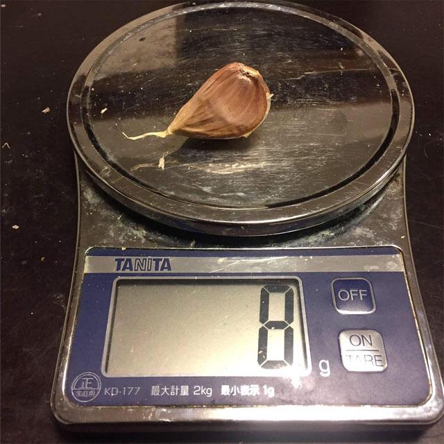 ニンニク植え付け前に鱗片の重さを計る