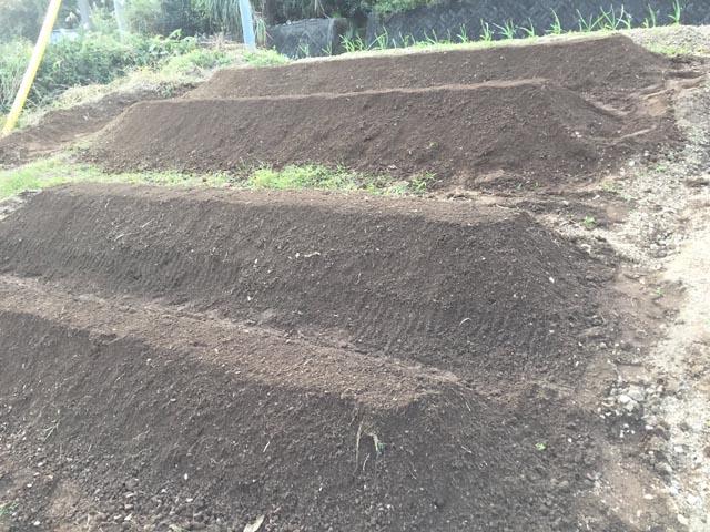 旧お茶畑の傾斜地