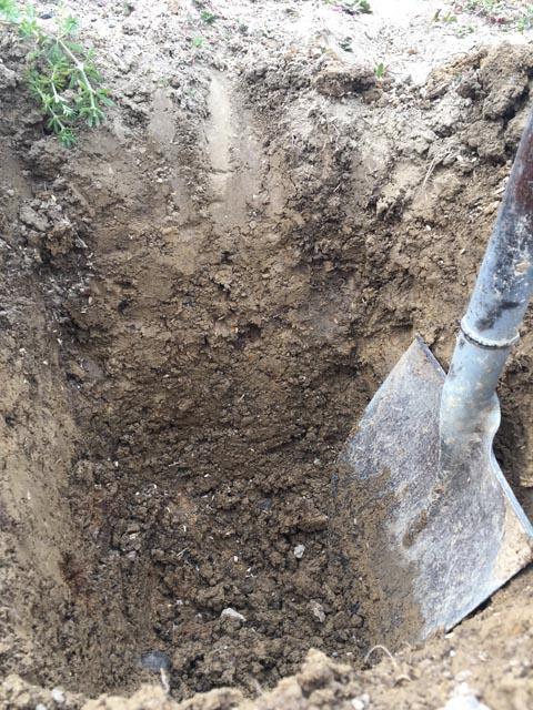 畑の土を深く掘る