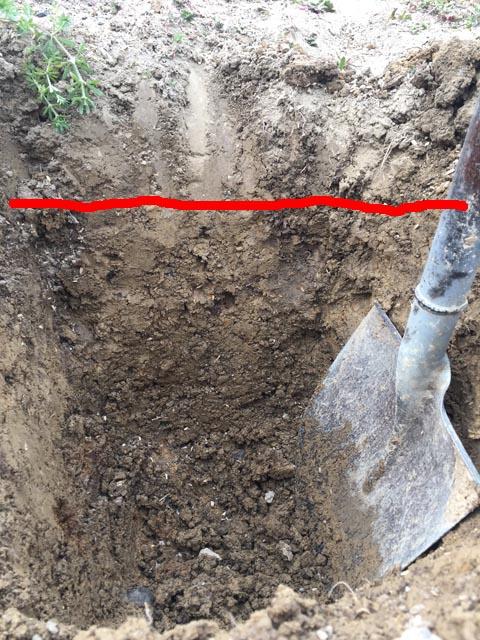作土層は20cmほど