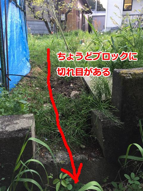 現在の排水ルート2